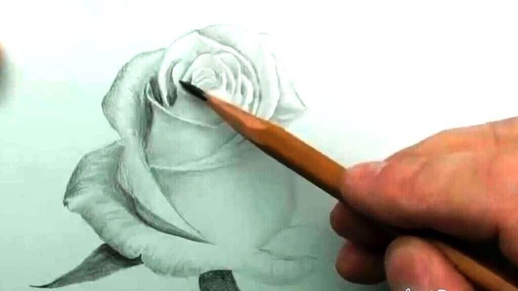 рисунок в дизайні